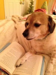 Leo is reading.